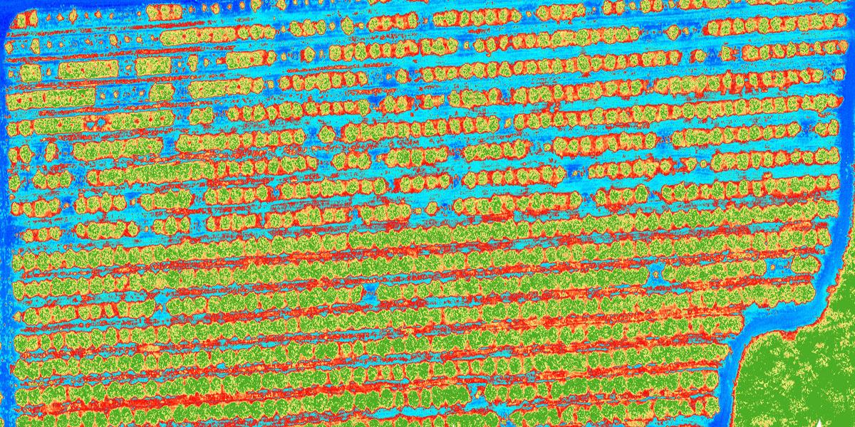 agricultura-con-drones-dronevision